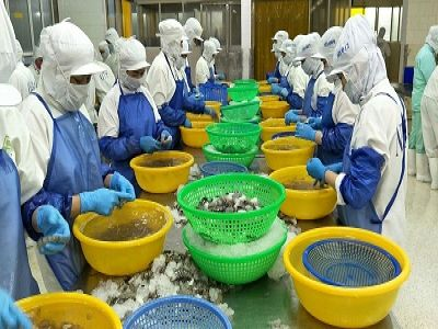 Cà Mau: 09 doanh nghiệp đạt danh hiệu 'Doanh nghiệp xuất khẩu uy tín' năm 2019