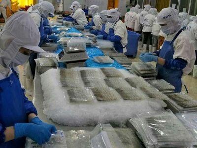 Xuất khẩu tôm Việt Nam sang EU hi vọng tăng trưởng nhờ Hiệp định EVFTA